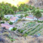 EcoTara Farm