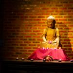 The Buddha Meditation Space at the Gratitude Vietnam Meditation Retreat Venue